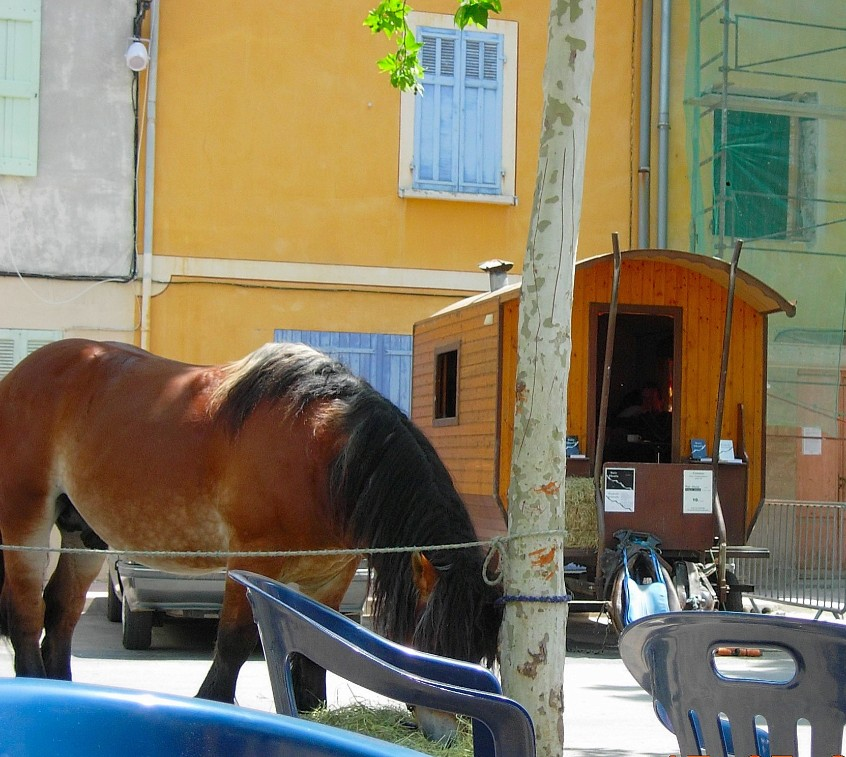 Poet's horse and trailer