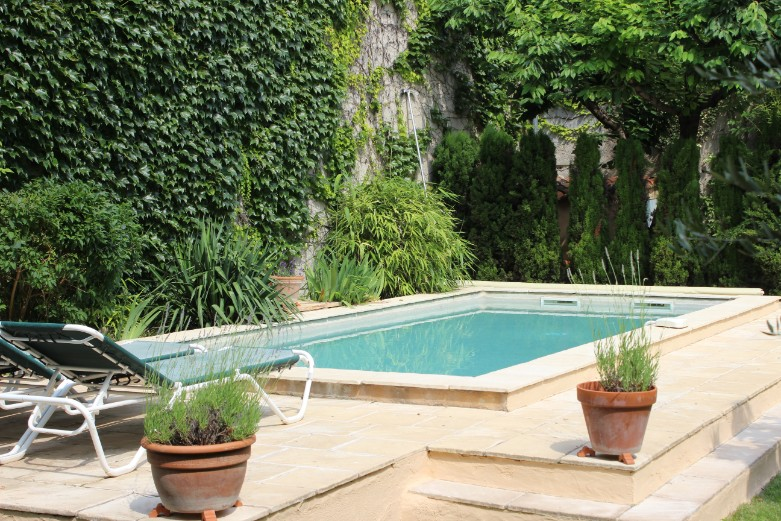 Pool from garden