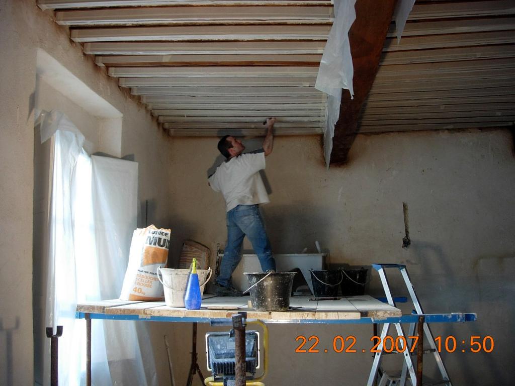 Salon - original ceiling plastering