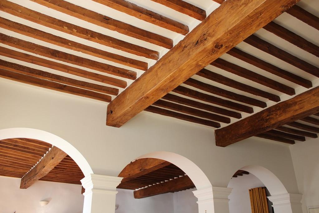 Salon ceiling