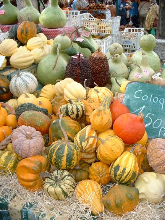 Annual pumpkin fair