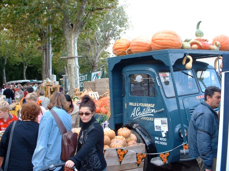 Annual pumpkin fair